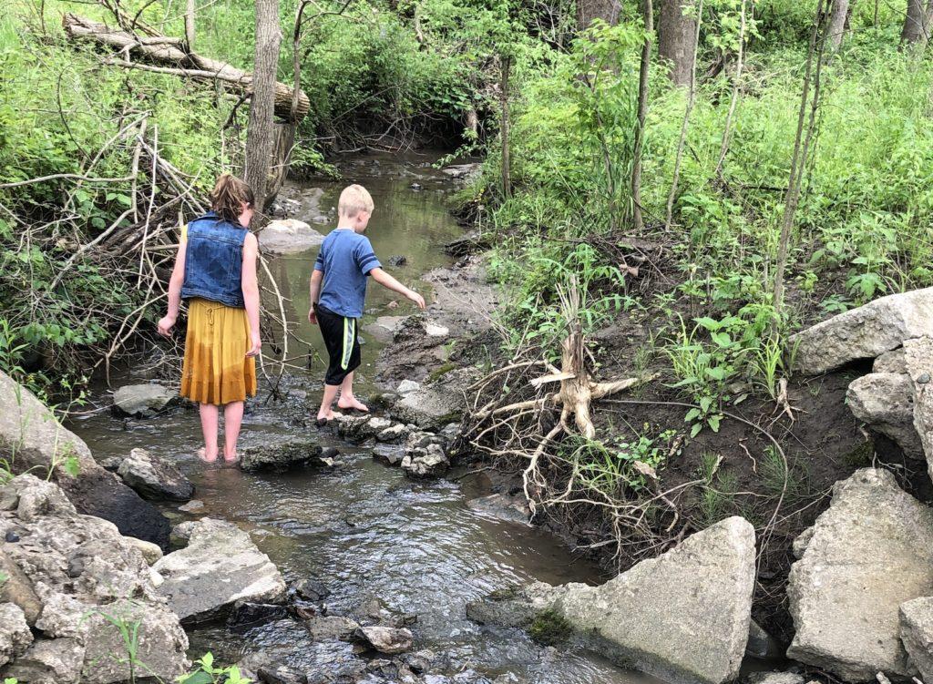 creek stomping buffalo trace
