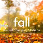 fall around champaign-urbana