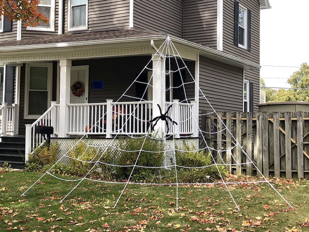spiderweb on W. Healey St.