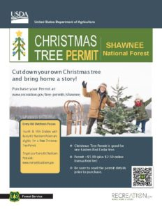 Getting a Christmas tree permit