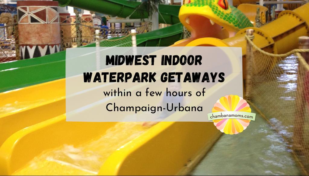 Midwest Indoor Waterpark Getaways Near Champaign-Urbana