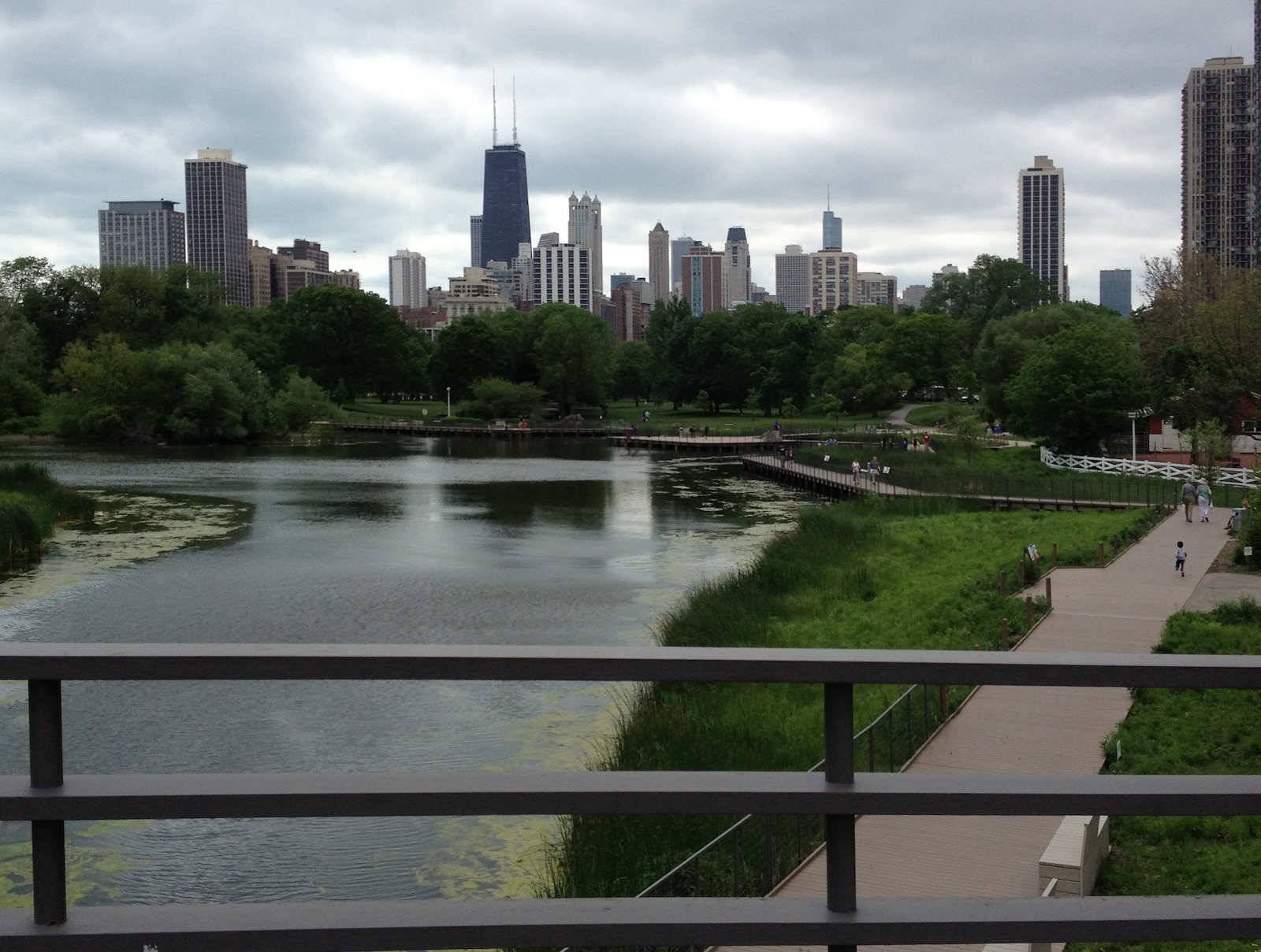 Chicago skyline, pictured from Lincoln Park Zoo
