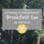 10 Things to Know About Brookfield Zoo