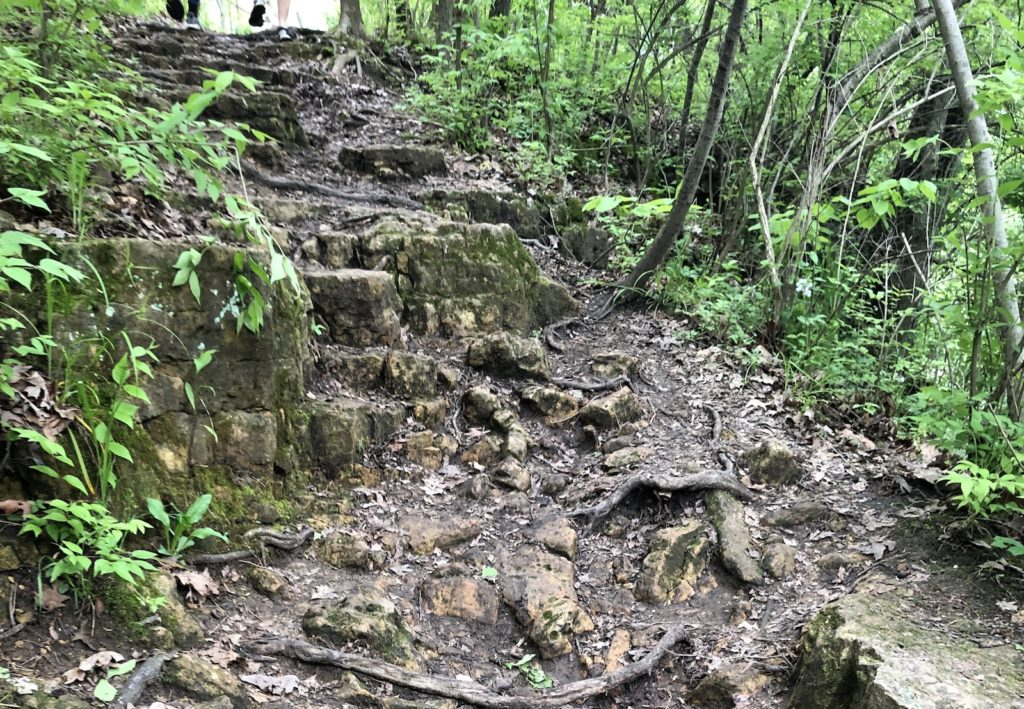 Rugged trail at Kankakee River State Park