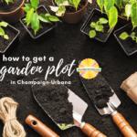 How to Get a Garden Plot in C-U