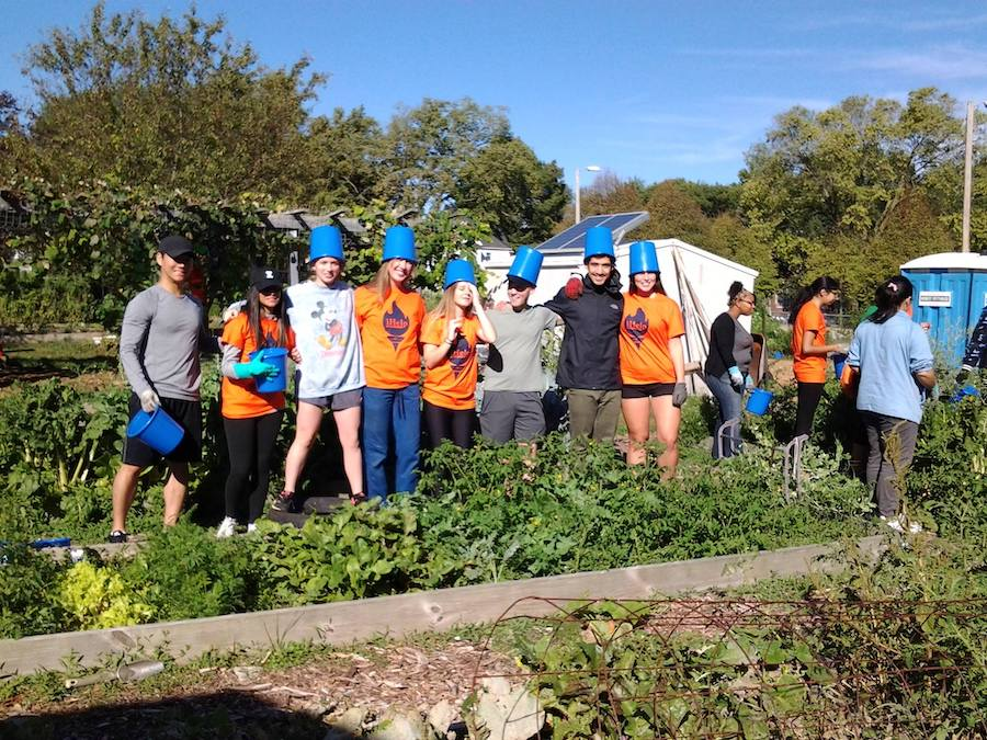 Workers at Randolph St. Community Garden