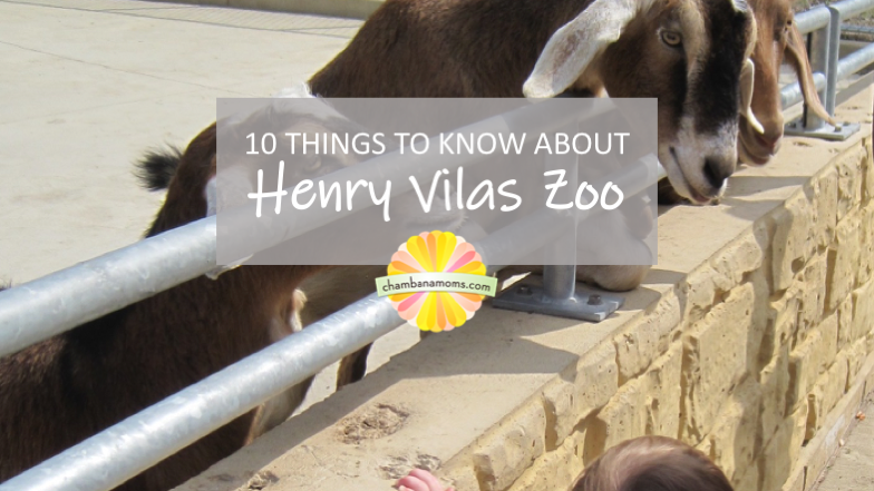 10 Things to Know about Henry Vilas Zoo