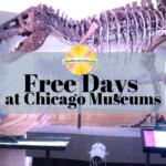Free Museum Days Chicago Summer