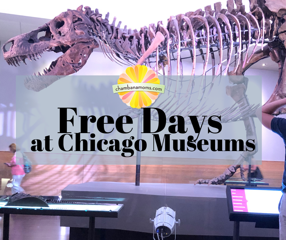 Free Museum Days Chicago Summer