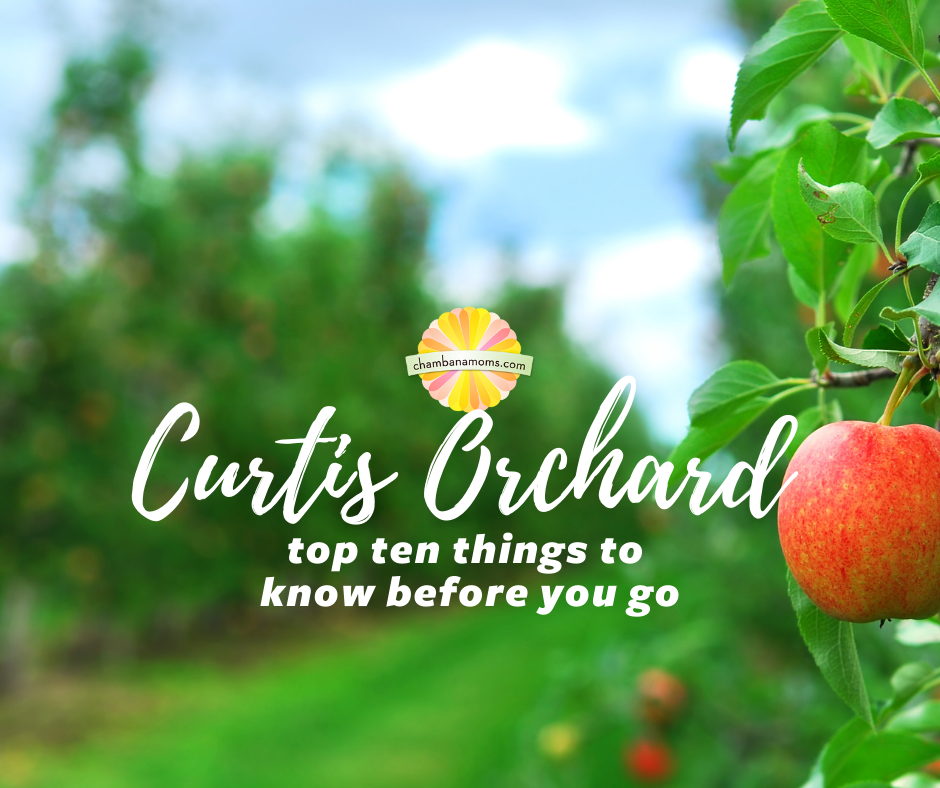 Curtis Orchard: What to Know Before You Go
