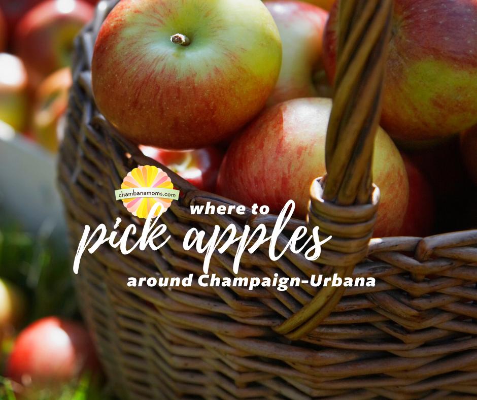 Where to pick apples around Champaign-Urbana