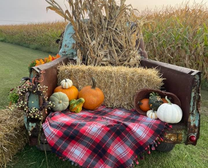 Wagon Wheel Pumpkin Farm Photo Spot 2