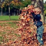 Kid throwing armful of leaves